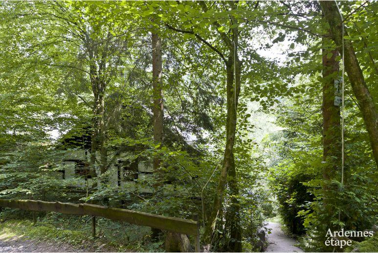 Verblijf In Vresse-Sur-Semois Voor Max. 9 Personen, Ardennen 34