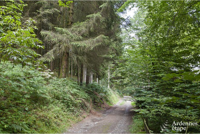 Verblijf In Vresse-Sur-Semois Voor Max. 9 Personen, Ardennen 35