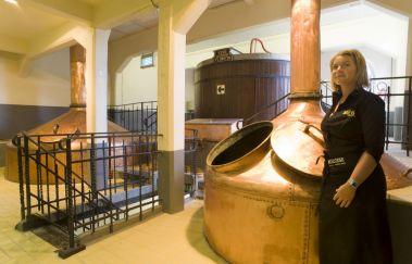 Brasserie du Bocq-Brasserie à Province de Namur