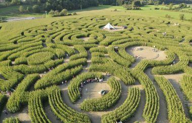 Labyrinthe-Centres récréatifs à Province du Luxembourg