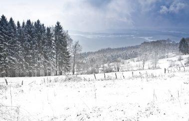 Pistes de ski de la Baraque Fraiture-Luges à Province du Luxembourg