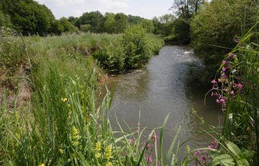 Réserve de la vallée de la Gueule-Sites naturels à Province de Liège