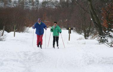 Pistes de ski de Fond du Mont Rigi-Ski de fond à Province de Liège
